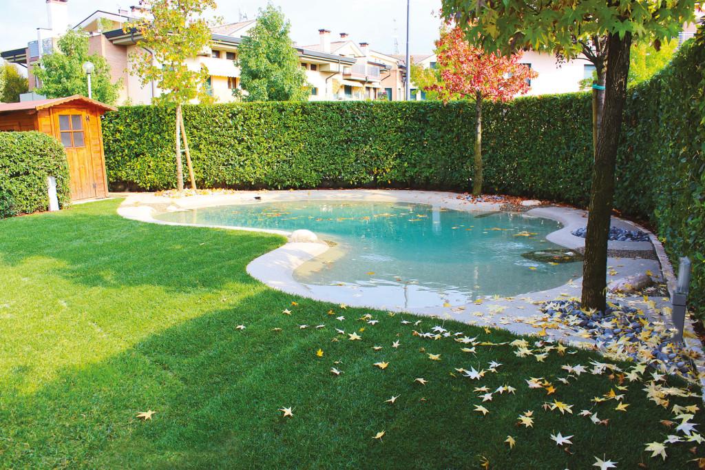 Un l ment d 39 ameublement piscine bio design - Problemi piscine biodesign ...